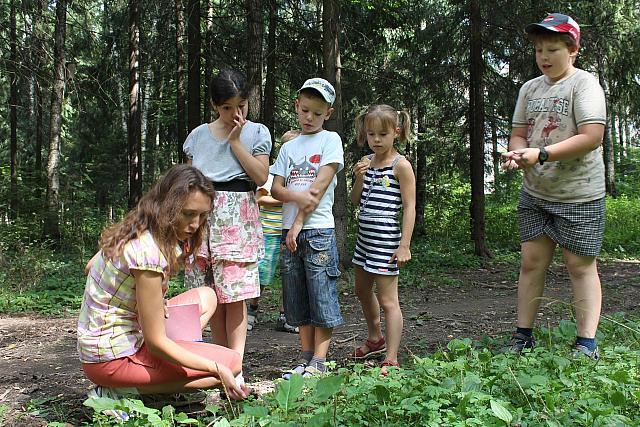 Программа «Хранители Зеленого Города», фото - Иван Аверченков