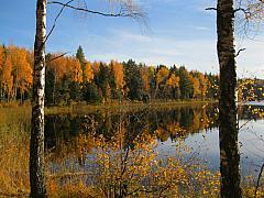 Озеро Долгое у деревни Озерки. Фото - Юрий Кривченко